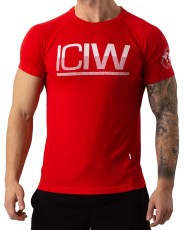 ICIW Perform Tri-blend T-shirt